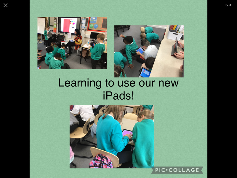 A busy start to Year 4!