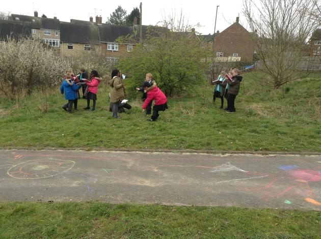 We looked at the trees in our forest school.
