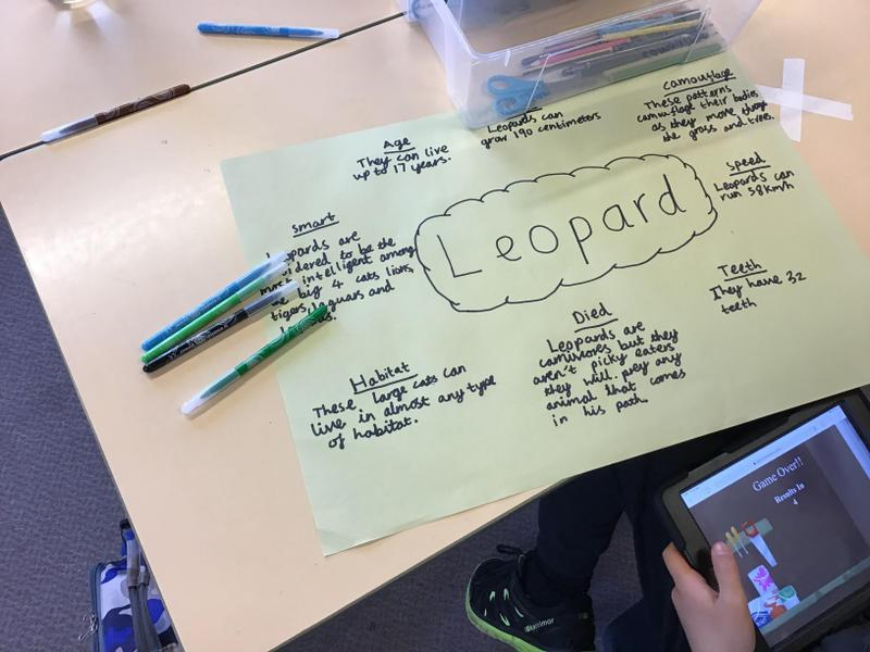 Adam's work on leopards.