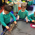 Making a habitat for the Dinosaurs