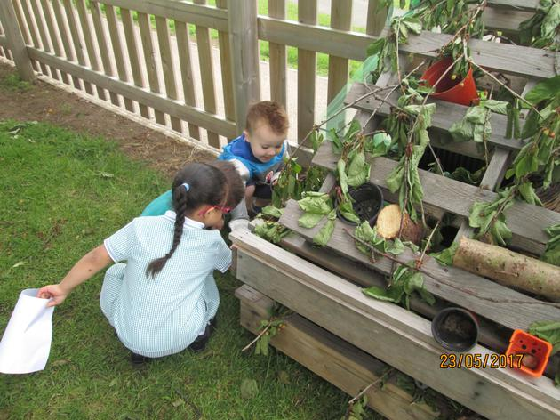Looking for insects to go in the bug hotel.