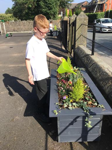 Planting flowers and vegetables in Eco club.