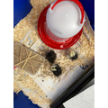 Scarlett & Isobel's new chicks
