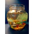Seren's fish bowl