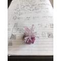 Rudi's Crystal Making