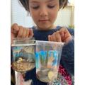 Seaside in a Jar