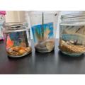 Isobel & Scarlett's seaside in a jar