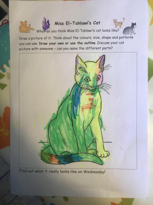 McKenzie's colourful rainbow cat.