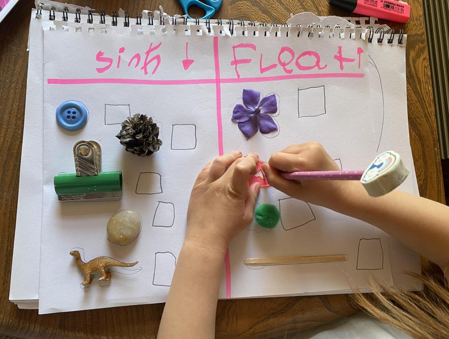 Martha is testing which objects sink or float.