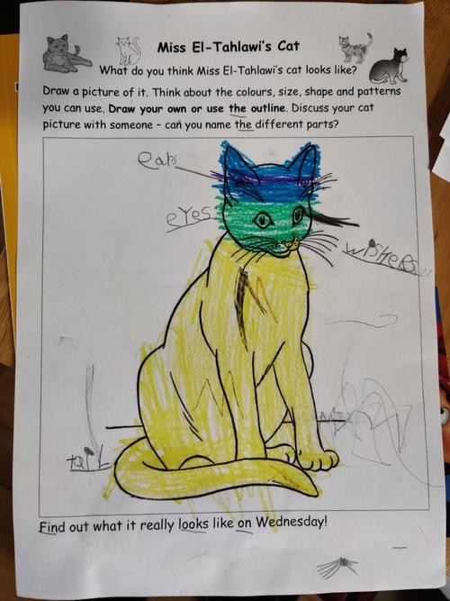 Well done Mia, you added labels to your cat too.