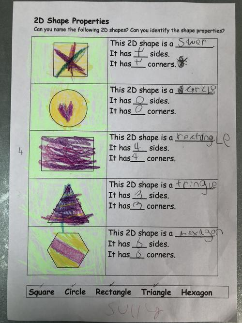 Sully has identified the properties of 2D shapes.