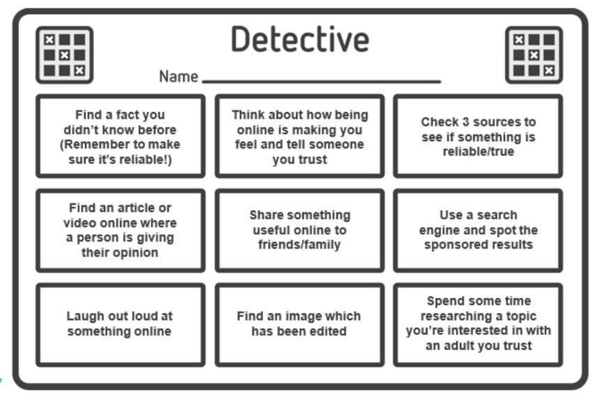 Internet Detectives activity
