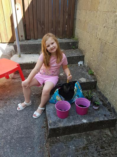 Amelia is potting up some plants.