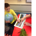 Looking at pictures of the Amazon river.