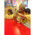 We helped to look after the babies.