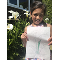 Alexia's carefully drawn and labelled flower...