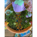 Lily-Mai's beautiful Fairy Garden.JPG