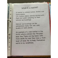 Harry's habitat report part 1...