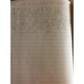 Amazing writing Theo