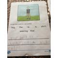 Practising sentences-Theo