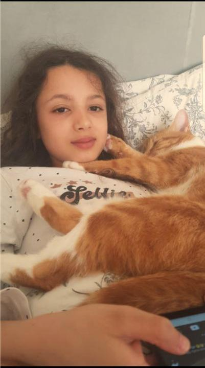 Snuggles with the cat