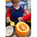 Exploring the textures of a pumpkin
