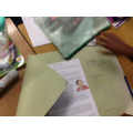 We worked in groups to identify the features of biographies.