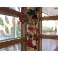Holly Class' rainforest display