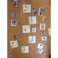 Beech classifying animals