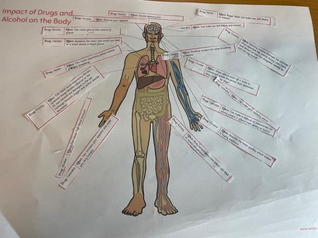 Impact of drugs and alcohol on our bodies