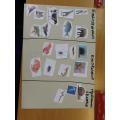 Beech grouping animals