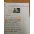 Looking at sources to find out more about the rainforest