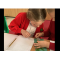 Using magnifying glasses to look closely at plants and drawing detailed observations