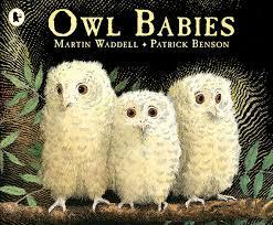 Autumn 2 (Topic) - Owl Babies by Martin Waddell