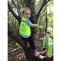 Reception - First session in the forest!