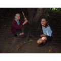Year 6 - Forest School Session