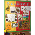 Year 1 have been looking at seasonal change.
