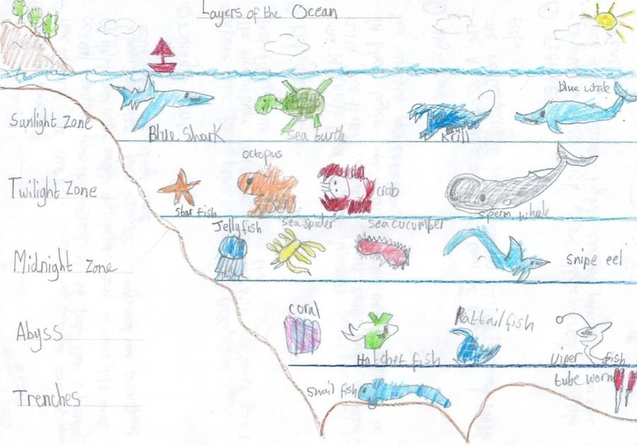 Yusuf's poster on Ocean Layers - great art work!