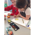 Observing seeds inside fruit.