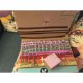 Emily's laptop