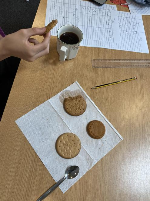 Testing Biscuits