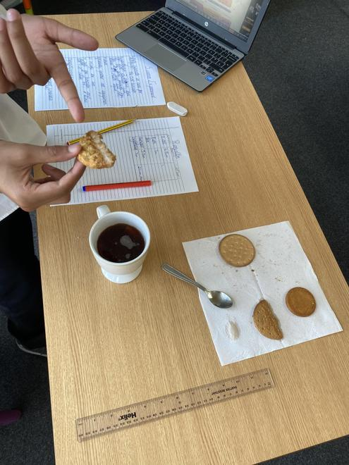 Seeing How Long the Biscuit Will in Tea