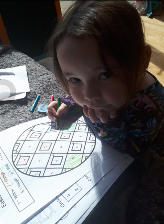 Darcy's colouring by numbers!