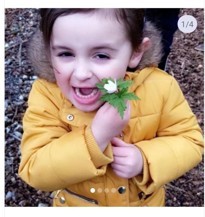 Spring flower from Grace