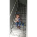 Lochlan's 5th birthday!