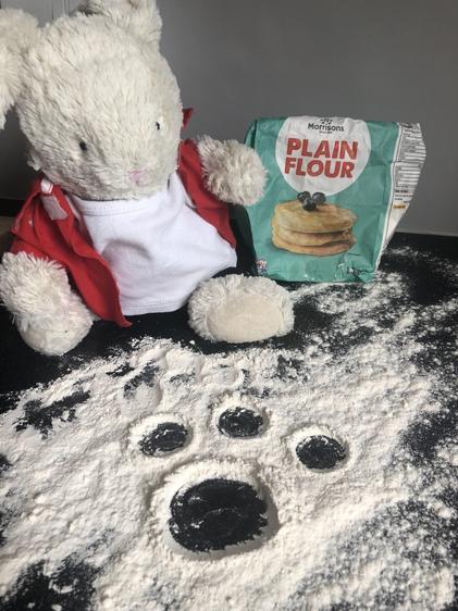 Reggie's flour footprints!