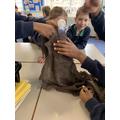 Antarctica coat experiment