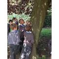 We went on a habitat walk around the school