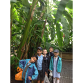 We really enjoyed our trip to Kew Gardens!