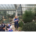Kew Gardens - 27.6.17 (Educational Session)
